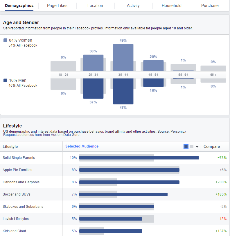facebook audience insight demographics