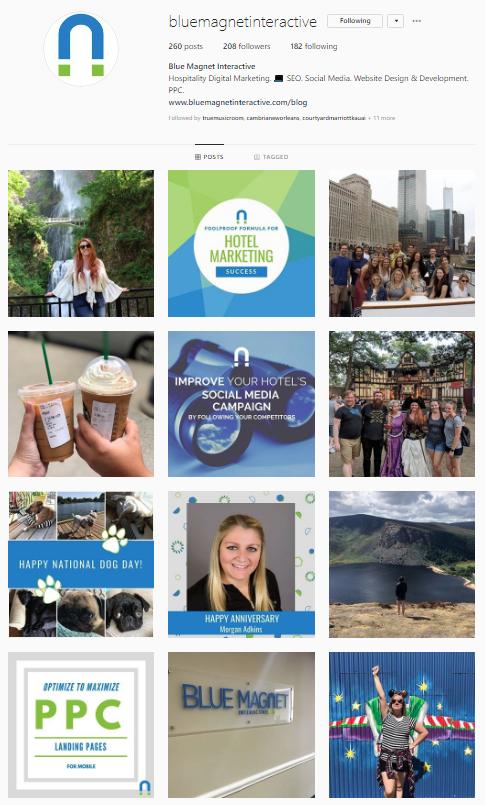 blue magnet interactive instagram digital marketing hospitality
