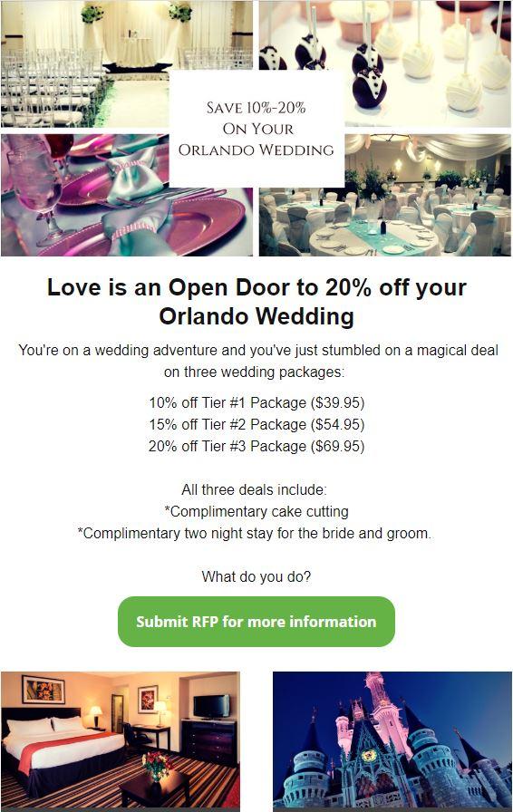 Wedding eBlast Example